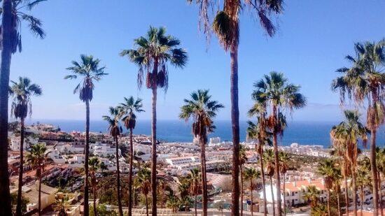 Affitti appartamenti e ville nella soleggiata Costa Adeje